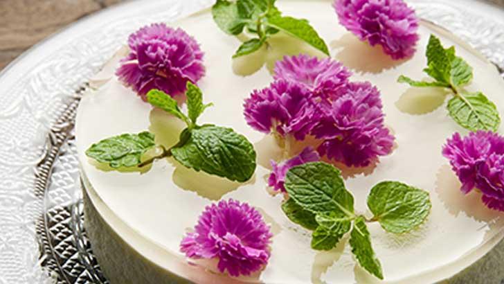 【パティスリーヒロアキ】透明なゼラチンにお花が浮かびあがる、可憐なレアチーズケーキ