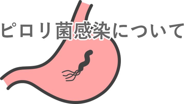 慢性胃炎、胃・十二指腸潰瘍、胃がんなどを引き起こすピロリ菌