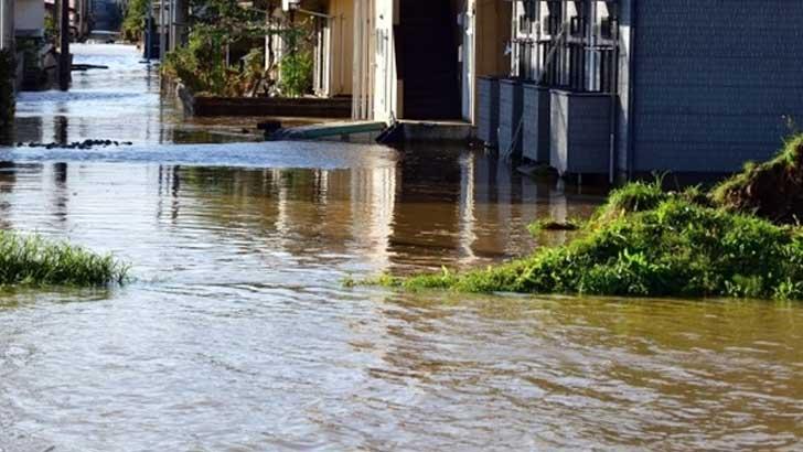 台風と感染症、複合災害に備えて今やるべきこととは?