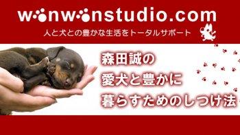 森田誠の愛犬と豊かに暮らすためのしつけ法