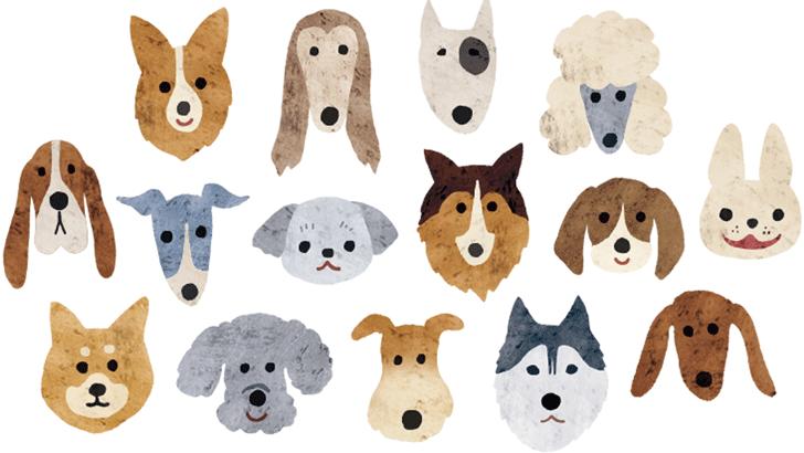 犬種別特徴としつけ方の基本